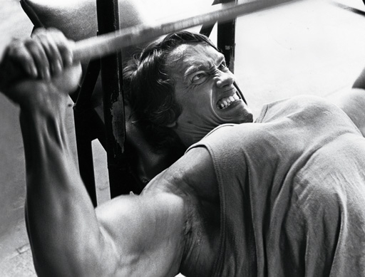 Arnold-bench